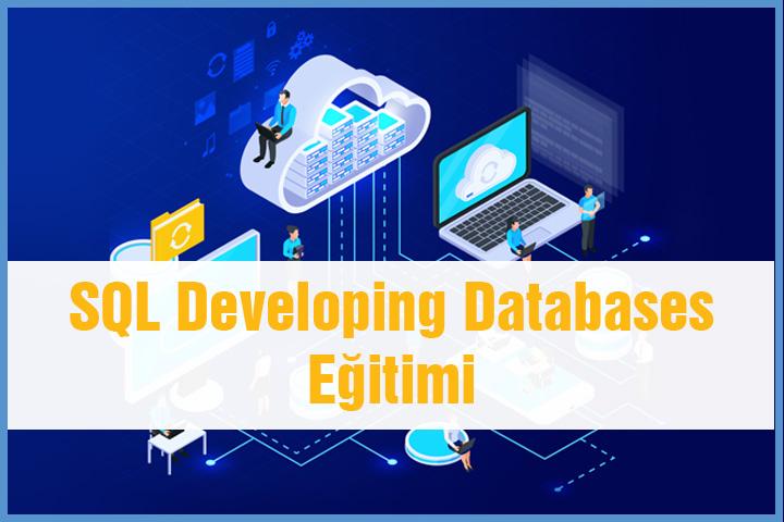 sql developing databases eğitimi